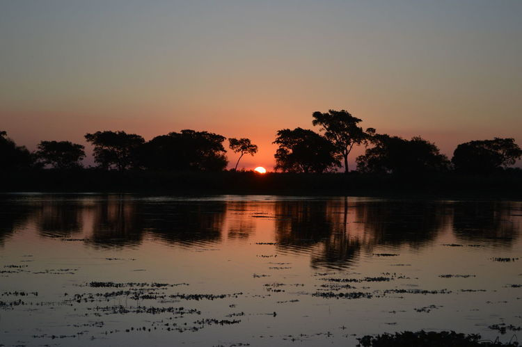 Sunset at the river Sky Water Reflection Sunset Tree Scenics - Nature Silhouette Beauty In Nature Lake Tranquility Tranquil Scene Plant Nature No People Waterfront Idyllic Non-urban Scene Orange Color Outdoors River