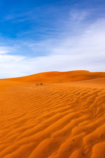 Desert Land Sand Environment Sand Dune Non-urban Scene Tranquil Scene Beauty In Nature Cloud - Sky Tranquility No People Arid Climate Climate Remote Nature Day Outdoors Vietnam Travel Destinations Travel Blue Red Colorful Contrast Dry Landscape Sky Scenics - Nature Pattern