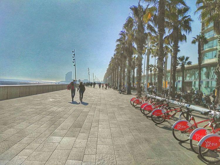 Barcelona Mobilephotography Mobilephoto España🇪🇸 Mobileart SPAIN Colors