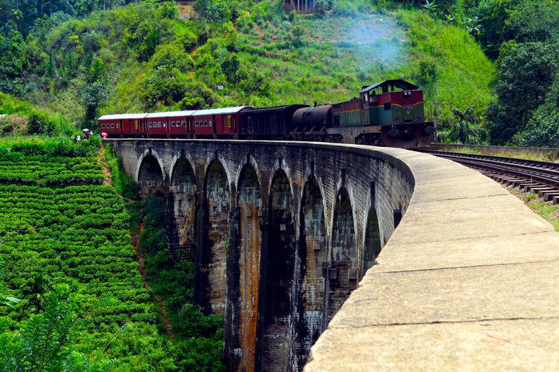 Train on bridge against trees