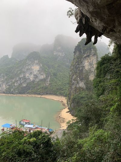Mystic Halong Bay Vietnam Halong Bay Vietnam EyeEm Best Shots EyeEm Nature Lover Tropical Tropical Climate Travel Travel Destinations Cave Beach Mystery Rock Rock Formation Water Tree Nature Plant Beauty In Nature High Angle View Day Fog Scenics - Nature Green Color Tranquility Reflection Tranquil Scene Outdoors Transportation