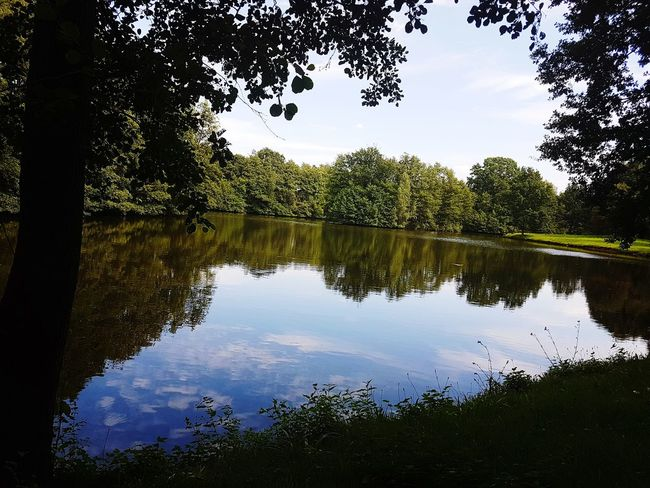 Reflection Tree Water Lake Sky Nature Outdoors No People Beauty In Nature Day Scenic Scenic Landscapes Scenery Germany 🇩🇪 Deutschland Cloud - Sky Nature Tree Reflection River Riverside The Week On EyeEm