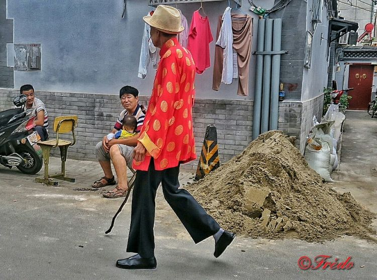 The Lord Of The Hutongs Tradition Street Hutong Street Lao Beijing Pékin Fin D'été Beijing China Street Photography Streetphoto_color Streetphotography Street Life Beijing, China Streetphoto This Is Beijing BEIJING北京CHINA中国BEAUTY
