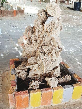 Tunisia Tunisia❤ Tunisia <3 Palm Tree El Faouar Tunisia Tunisie Terre D'accueil Tunisia_with_love Tunisie Palmtrees El Faouar Tunisie Plams🌴 Palm Leaf Kebili Kebilli Tunisia❤ Palm Summer Exploratorium