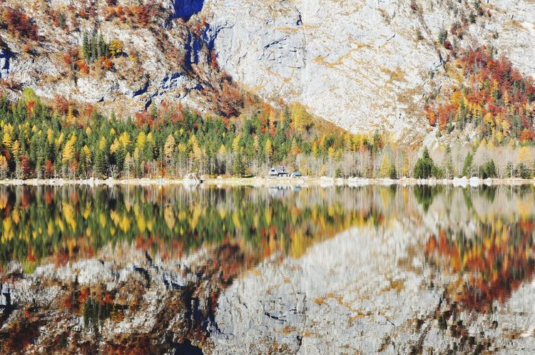 Autumn Austria Altaussee Symmetrical Autumn Reflection Lake Nature Beauty In Nature Scenics Tree Tranquil Scene Mountain Water No People Landscape