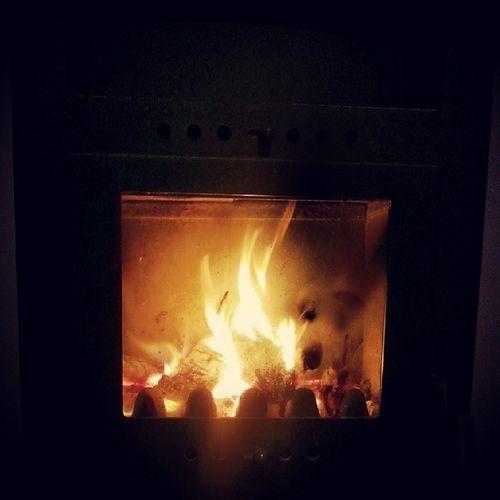 dormire accanto al fuoco !