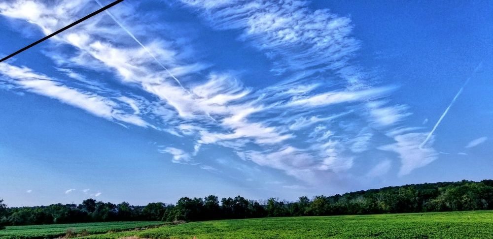 Beauty In Nature Nature Cloud - Sky Field Agriculture Tranquility Landscape Sky Blue Day Scenics Tree Freshness Vapor Trail