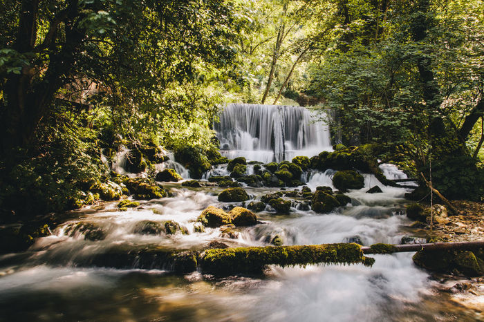 River in forest Beauty In Nature Canon EyeEm Best Shots EyeEm Nature Lover Forest Long Exposure Motion Nature No People Outdoors River Rock - Object Serving Size Spring Srbija Water Waterfall