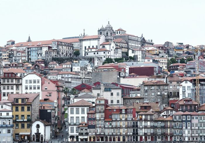 Architecture City City Street Cityscape Oporto Oporto, Portugal Portugal Architecture Building Exterior Built Structure City Cityscape cityscapes Clear Sky Day House No People Outdoors Portugaldenorteasul Residential Building Sky Streetphotography Town Tree White Background