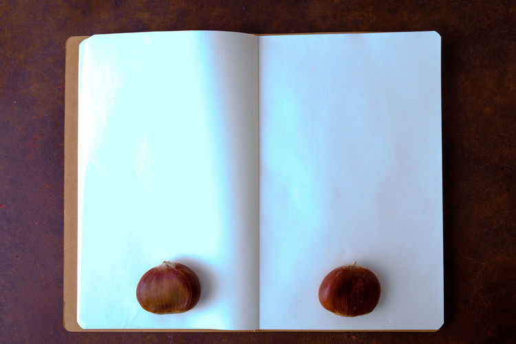 Chestnuts on the table with copy space Chestnuts Copy Space Menu Agenda Blue Book Close-up Directly Above Food Food And Drink Healthy Eating High Angle View Indoors  No People Notebook Paper Publication Side By Side Still Life Table Turquoise Colored Two Objects Wellbeing White Color