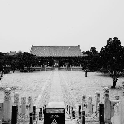 Caution Sign Wet Floor Snow ❄ Architecture Built Structure Travel Destinations Building Exterior Sky Day Outdoors No People Architecture Light And Shadow Blackandwhite Full Impressive View Blackandwhite Photography Light Vacations China Winter Tree Blackandwhite Ming Tombs China