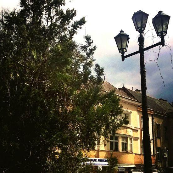 Украина♥ ужгород улица фонарь дерево