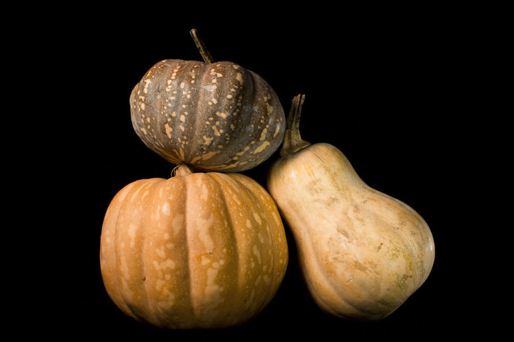 Close-up of pumpkins against black background