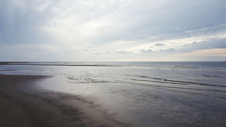 Water Low Tide Sea Beach Swimming Flamingo Sunset Salt - Mineral Sky Horizon Over Water