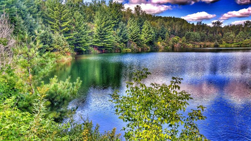 Water Tranquil Scene Tranquility Scenics Lake Growth Beauty In Nature Non-urban Scene Reflection Green Color Cloud - Sky Remote Outdoors Minnesotaphotographer Mine Pits Summer2016 Gods Beauty