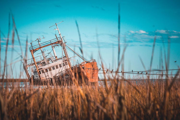 Ship wreck in sea against sky