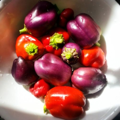 Redpeppers Homegrown Harvest Organic