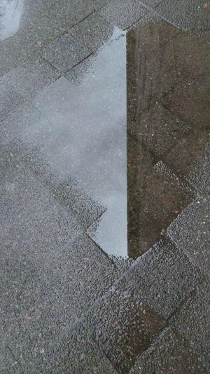 Baum Bürgersteig Gehsteig Grau Gray Nass Rain Reflection Regen Sidewalk Tree Wasser Water Wet