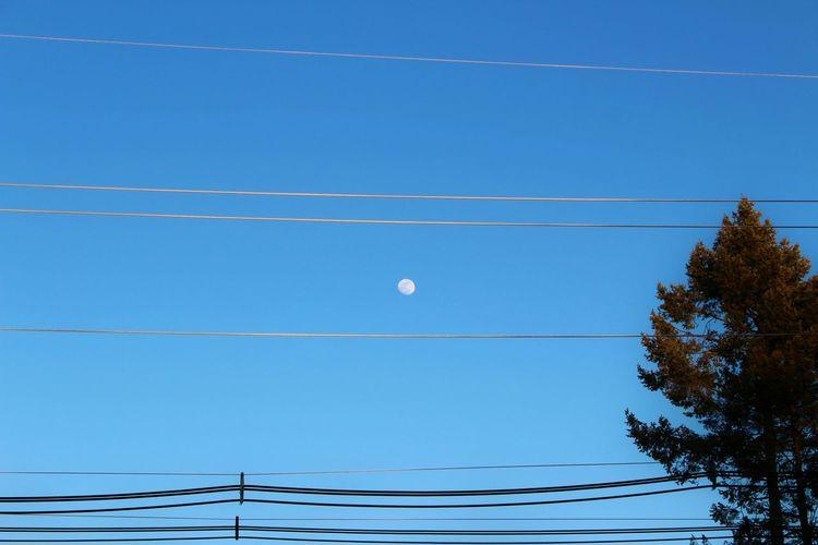 Moon Blue Sky Hi! Taking Photos Hello World EyeEm New Jersey Shapes Skylovers Smart Simplicity Lookingup