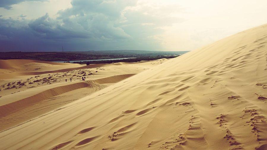 Sand Sand Dune Nature Desert Beauty In Nature Landscape