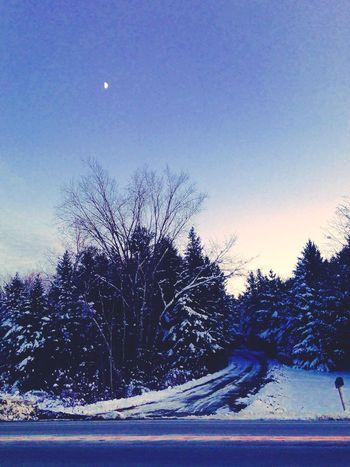 "©Ann Norsworthy ""t h r o u g h t h e w o o d s..."" Winter EyeEm Nature Lover Roadside America IoLIGHTstudios"
