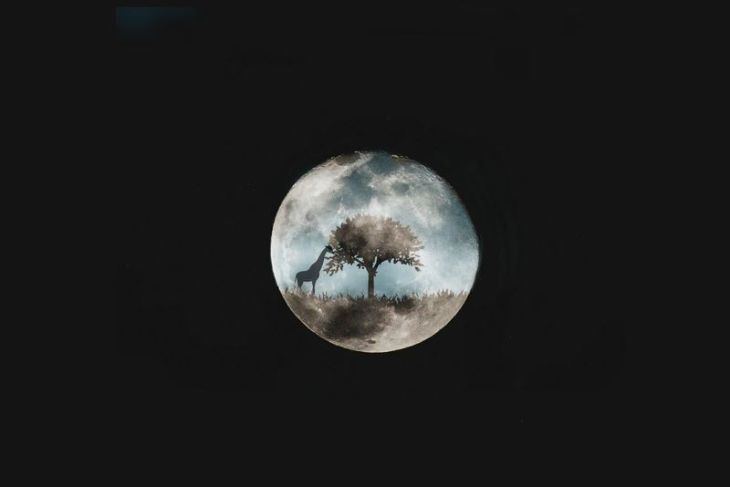 A beautiful moon with story behind it.The OO Mission Moon_collection Moon Moonphotography EyeEm Best Shots