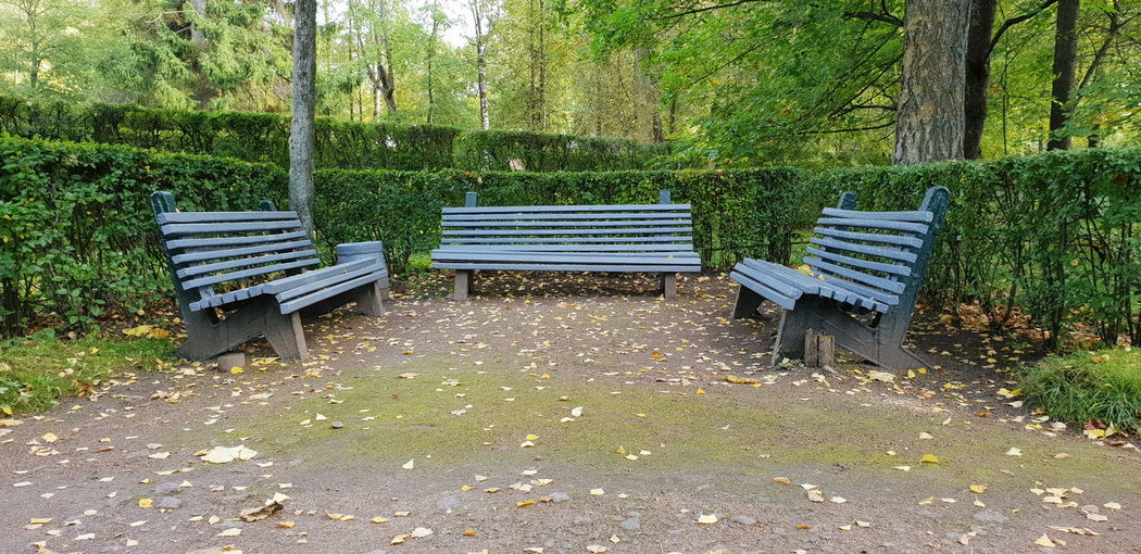 Old Withgalaxy снятонаgalaxy Санкт-Петербург Saint Petersburg Outdoors Seat Grass Park Bench Park Fallen Leaf Wooden Park - Man Made Space
