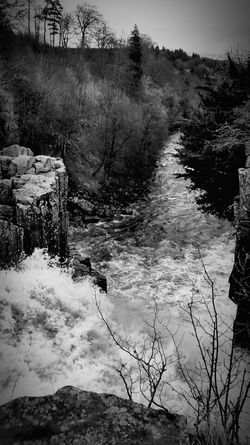 High Force And Low Force Waterfall Water Rocks Blackandwhite Branchs Walking Around Amazing Experience