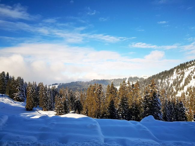 Flaine Flainefrance Snow Winter Cold Temperature Sky Cloud - Sky No People Nature