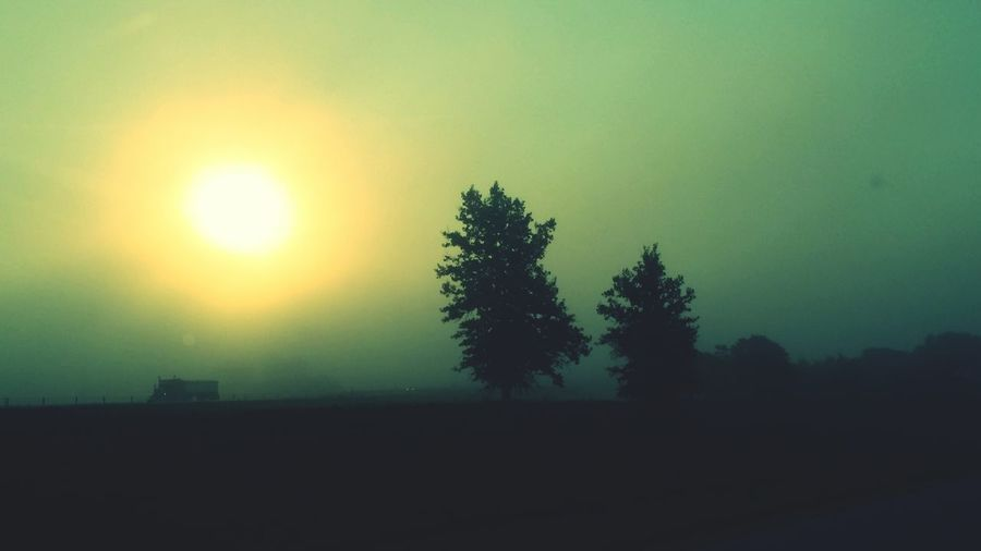 Iowa Foggy Morning Fogporn Sunrise_Collection
