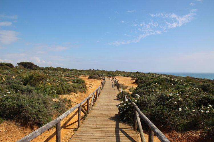 Calas De Conil Conil De La Frontera Holiday Nature Relaxing Beach Beauty In Nature Calas Nature Sand Sea Sky