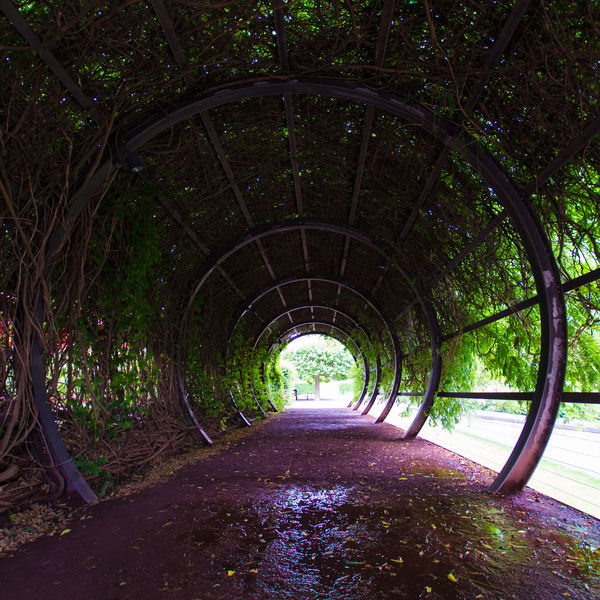 Be. Ready. Circle Green Architecture Built Structure Circles Pattern Light And Shadow Outdoors The Way Forward Tunnel Urban Vegetation