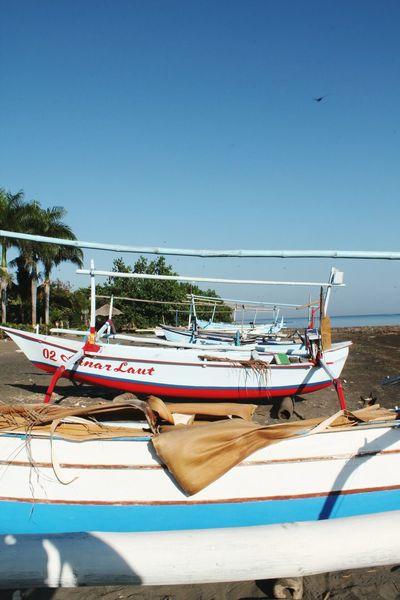 Fish boats Fishing Boat Boat Fisherman Beach Photography Bali, Indonesia Lovina Beach Beach Coast