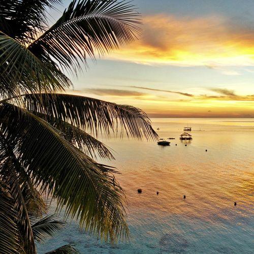 VodaKrasna VodaKrasnaBeachResort Sun Resort Beachresort Outdoors Sunrise Cebu CebuResorts Alcoy AlcoyCebu CebuBeaches CebuTravel Travelcebu CebuPhilippines CebuIsland Tropics Tropical TropicalIsland  TropicalBeach Philippines Philippinebeaches Itsmorefuninthephilippines TravelPhilippines Travel Wander WanderingFeet WanderingWorkingWoman XishiWanders Sky