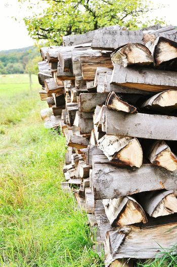 Wooden Wood - Material Wood Firewood Firepl