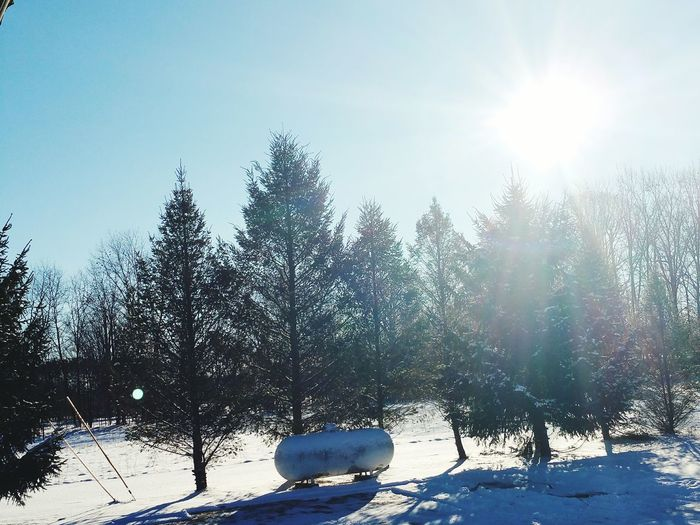 Watch out! The sun is shining in Michigan! Snow Winter Cold Temperature Sunshine ☀ Newseasonessentials First Eyeem Photo