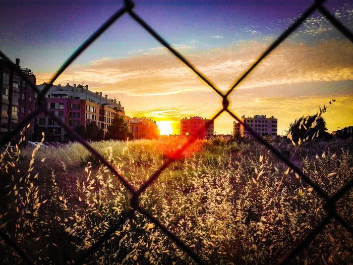 Sunset Architecture Built Structure Building Exterior Sun Chainlink Fence Sunbeam City Life Cityscapes Madrid, Spain Madrid Infrontofmyhouse Neighbourhood Orange Color Verja Solar Lagavia TakeoverContrast The City Light