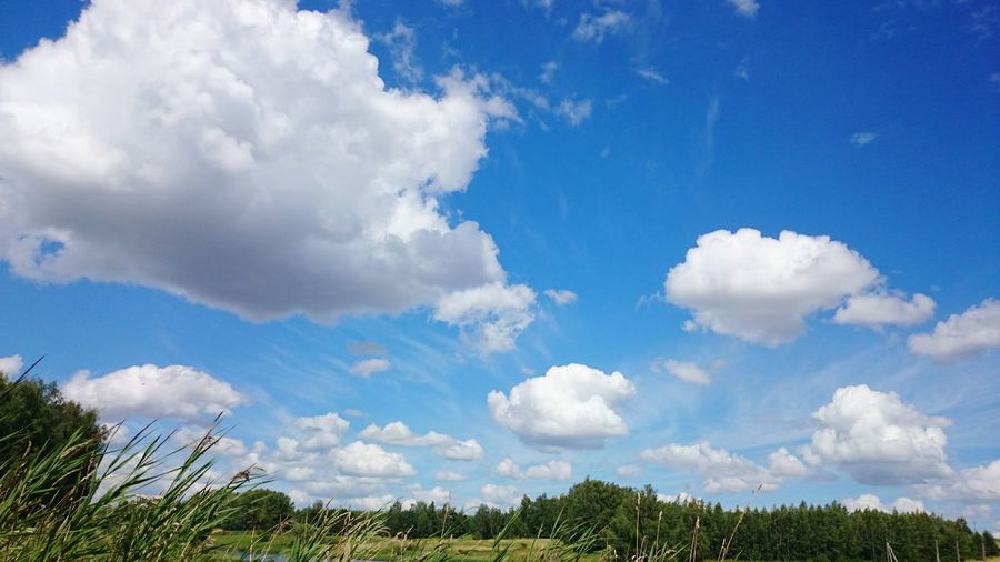 Beautiful View Of Clouds