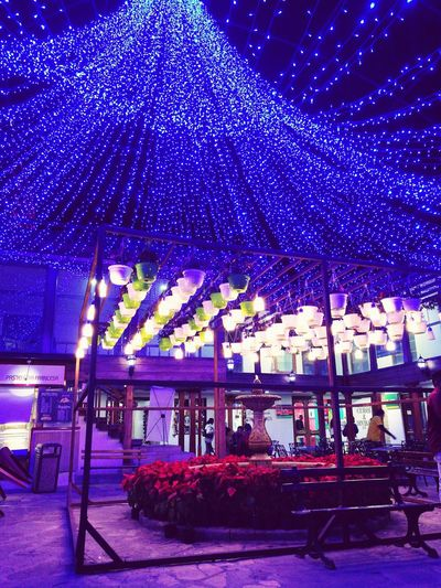 Luces en Bogotá MyCity❤️ Christmas Christmas Lights Family❤