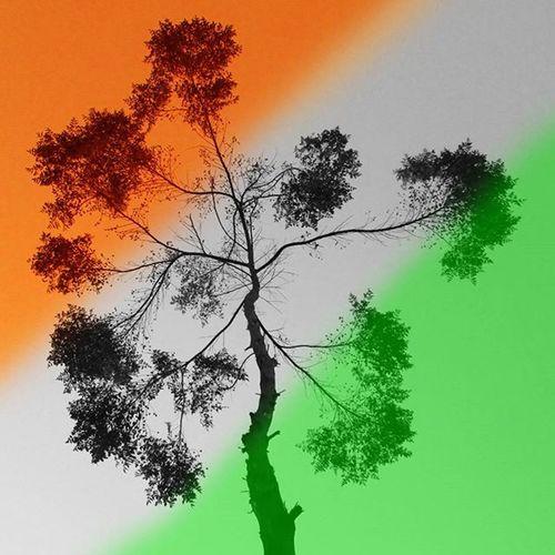 🇮🇳🇮🇳🇮🇳 Instagram_ahmedabad Indiapictures Insta_nadiad