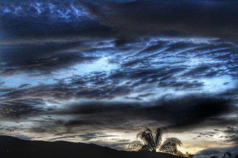 Sky Dramatic Sky Cloud - Sky Nature Beauty In Nature Tranquility Storm Cloud Palmtree Silouhette Nightfall Outdoors Scenics Sunset My View