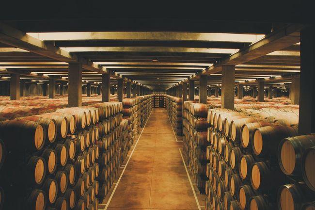 Los caminos del vino. Larioja Logroño