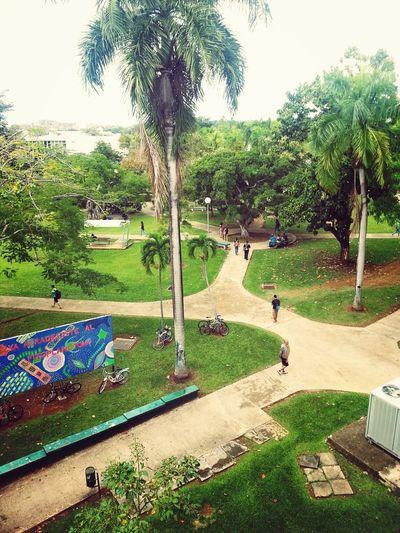 Colegio! College Life Bestplaces Student Life