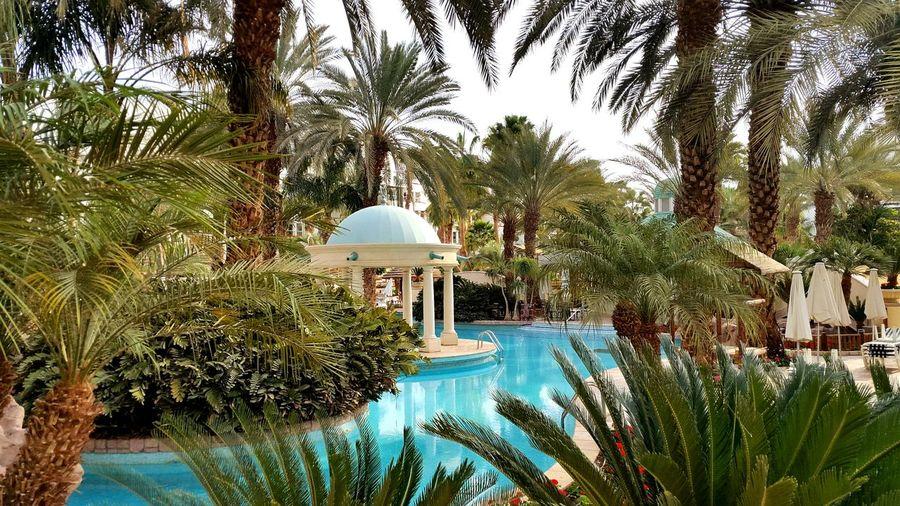 Enjoying Life Colors Hotels Beautiful Relaxing Nice Israel Romantic EyeEm Water