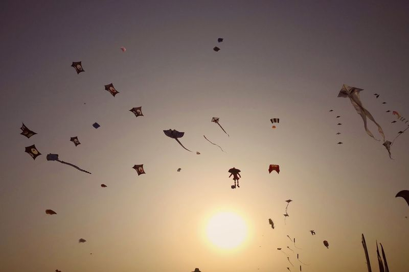 Qatar International Kite Festival Doha Qatar Kite Kitesurfing Kite Flying Festival Flying Beauty Sunset Silhouette Sun Mid-air Fly