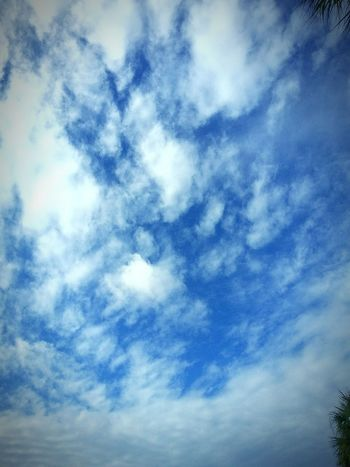 Weather Enjoying The Sun Charleston Clouds South Carolina Relaxing Getting In Touch Sunbathing Morning Light Clouds And Sky