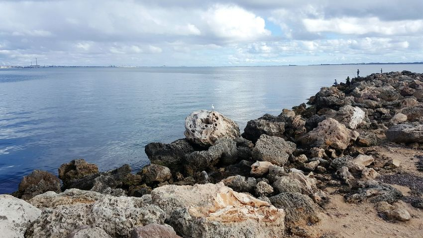 Rocky Shore By The Sea Fishing Water Sea Ocean Blue Sky Cloudy Day Cloud Beauty In Nature Tranquility Tranquil Scene Rock - Object Scenics Horizon Over Water Nature Non-urban Scene Rocky Calm Coastal Feature Day Seascape Cloud Rock Formation Cloud - Sky