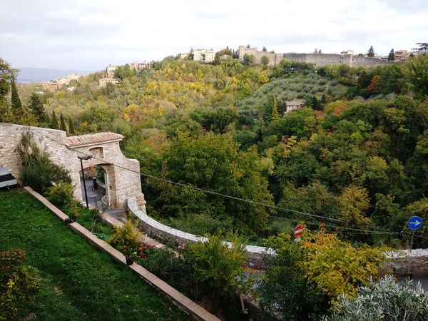 The Valley Architecture Arch Architecture_collection Nature Nature_collection Nature Photography Italy Walking Around Wall Wall - Building Feature Green Color Green Sky Valley Wood WoodLand Woods Wood EyeEm Selects Tree Sky Ancient Civilization Ancient Rome Old Ruin Ancient Historic Ancient History The Past Civilization
