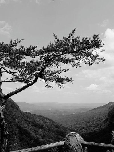 Cloudland Canyon First Eyeem Photo