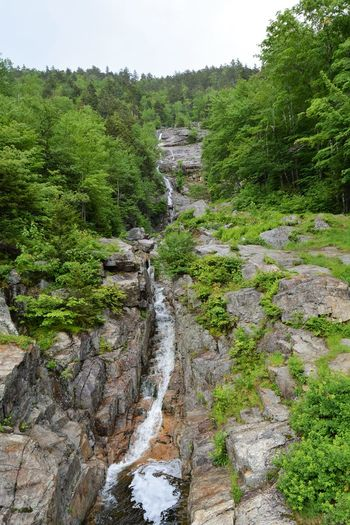 Beauty In Nature Day Forest Motion Mountain Nature No People Outdoors River Rock - Object Scenics Silver Cascade Sky Tranquil Scene Tranquility Tree Water Waterfall White Mts